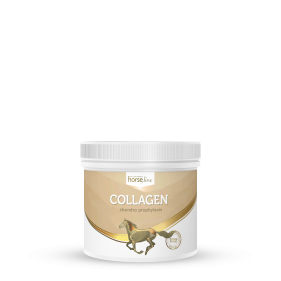 HorseLinePRO Collagen 300g